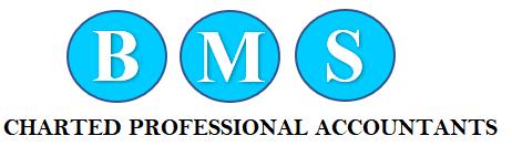 Business Management Services Logo